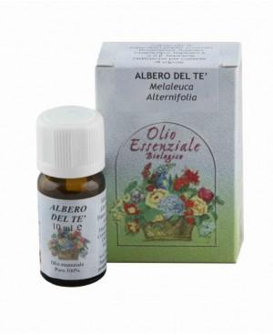 Olio essenziale Albero del tè 10 ml - Tea tree